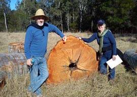 Recycled habitat logs