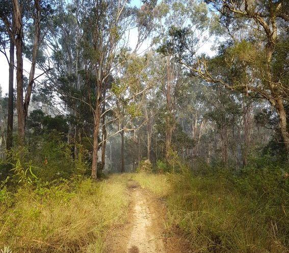 Bartolo Nature Reserve